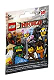 LEGO- Bustine Minifigure The Ninjago Movie, 71019