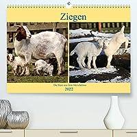Ziegen - Die Stars aus dem Streichelzoo (Premium, hochwertiger DIN A2 Wandkalender 2022, Kunstdruck in Hochglanz): Die meckernden Lieblinge im Tierreich. (Monatskalender, 14 Seiten )