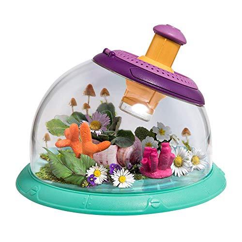 Yoouo Faunarium, Faunarium - Kunststoffterrarium - Faunabox - Insektenbox - Insektenterrarium