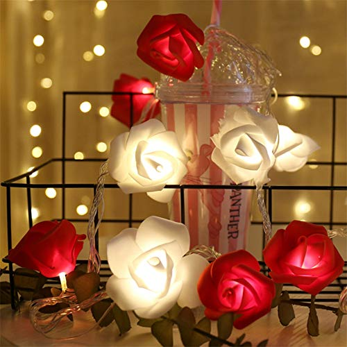 51MalrnNBLL Red-White Rose Flower Indoor Fairy Lights (20 LEDs, Battery Operated)
