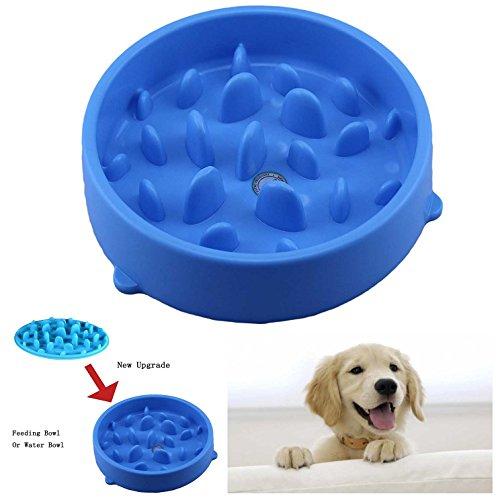 Itian Comida Lenta, Perros Tazón Plato de Comida para Mascotas con Alfombra Antideslizante (Azul)