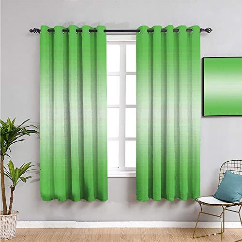 Ombre - Cortinas insonorizadas para ventana de privacidad, 160 cm de largo, diseño digital, impresión fácil de instalar, 42 x 63 pulgadas, color verde