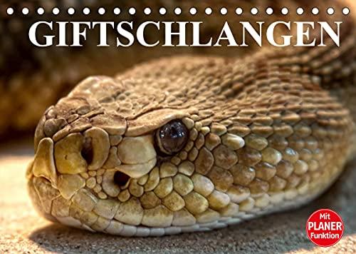 Giftschlangen (Tischkalender 2022 DIN A5 quer)