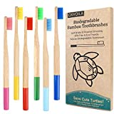 Set de cepillos de dientes de bambú para adultos, color multicolor