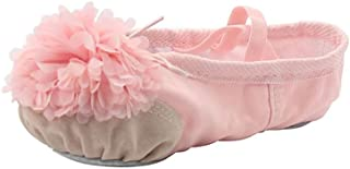 MSMAX Kid Girl's Canvas Ballet Dancing Flat Yoga Practise Shoes with Flower