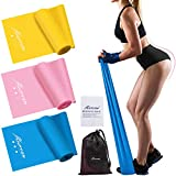 HPYGN Resistance Bands Set, Exercise Bands for Physical Therapy, Strength Training, Yoga, Pilates, Stretching, Non-Latex Elastic Band With Different Strengths,Workout Bands for Home