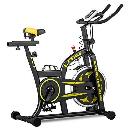 HANSTORM Exercise Bike Indoor Cycling Bike, Stationary Bike Silent Belt Drive, Indoor Cardio Bike for Home Gym