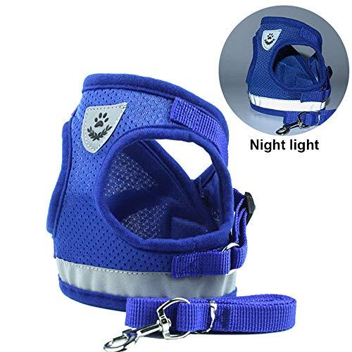 BVAGSS 2PCS Hundegeschirr und Leine Weste Verstellbare Hundegeschirr Soft Air Mesh Brustgeschirr Harness für Hunde Katze XH045 (S, 041 Blue)