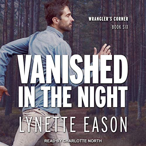 Vanished in the Night audiobook cover art