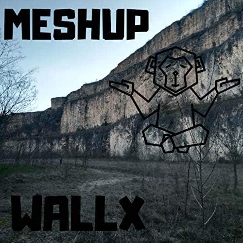 WallX