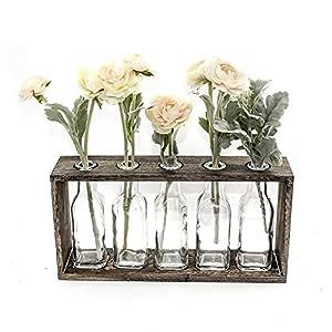 Silk Flower Arrangements FUNSOBA Rustic Vintage Hydroponic Flower Vases Set in Wooden Rack 5 Bottles (Type B 5 Vase Set)