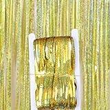 BXing Telón de Fondo de Fiesta, Cortina de lámina metálica con Flecos, telón de Fondo Brillante, decoración de Pared para Fiesta de Bodas, cumpleaños, telón de Fondo para Fotos