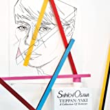 TEPPAN-YAKI -A COLLECTION OF REMIXES-(2CD)(regular-price)
