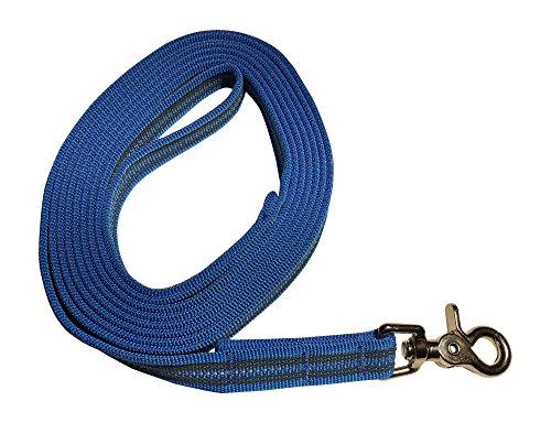 DOGS and MORE - Gummierte Schleppleine/Suchleine/Feldleine mit Reflektionsstreifen => 3 Meter (mit Handschlaufe) - Orange, Blau oder Lila