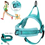 AutoWT No Pull Dog Harness Leash, Soft Flannel Padded Walking Dog Harness