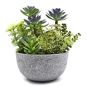 KELZIA Planta Artificial – 1 Maceta con Decoraciones de Plantas Falsas – Escritorio de Oficina, Mesa, Ventanas, Repisas…