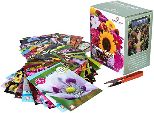 Flower Seed Box Bumper Pack Includes 40 Different Varieties Aster, Cosmos, Sunflower, Poppy, Pansy and More Plus 1 Pair of Garden Snips, Ideal Gift, 1 x Flower Seed Bumper Pack by Thompson and Morgan