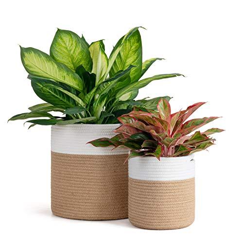 Goodpick 2 cestas de cuerda de yute tejidas para plantas, macetas de interior y decoración de almacenamiento, cesta de almacenamiento moderna, 30,5 cm y 20 cm