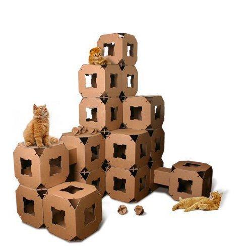 NEW Cube Maison Tour pour chat jouet Pet Tunnel en carton Bloc/5Piece