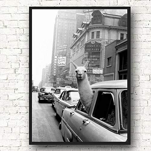 Lama auf der Leinwand eines New Yorker Taxis Wandkunst Nordische Plakate und Drucke Tierwandbilder rahmenloses Gemälde 63cmX90cm