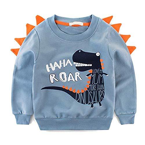 Rebavl Boys Long Sleeve Pullover Sweatshirts, 1-cartoon Dinosaurs, 3-4 Years