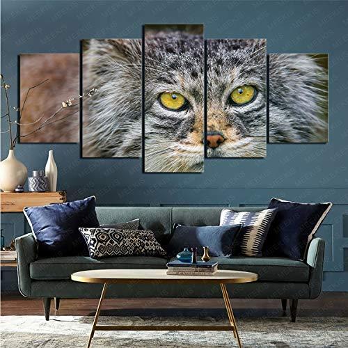 mmkow Pintura sobre Lienzo Conjunto de 5 Piezas Animal Pallas Gato Sala de Estar Dormitorio Decoración del hogar Decoración 100x200cm (Marco)