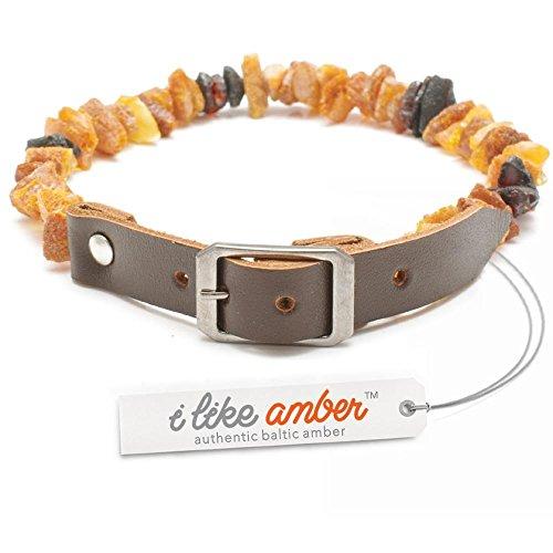 Bernstein Halsband für Hunde–für Zecken und Flöhe Größe 20bis 70–Top Qualität auf Amazon–aus 100% echtem roh Baltischer Bernstein–Floh- und Zecken Schutz–100% natürliche & frei von Chemikalien