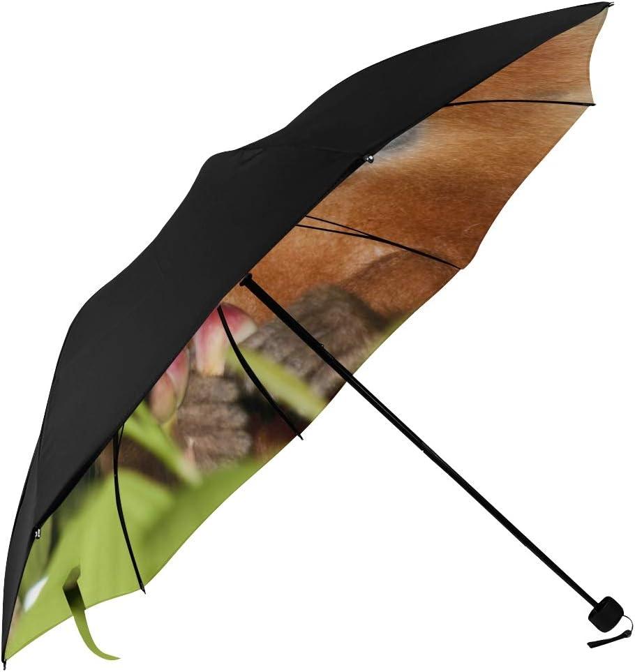 Bombing free shipping Folding Travel Umbrella Petite And Pleasant Monkey Unders Finger New item