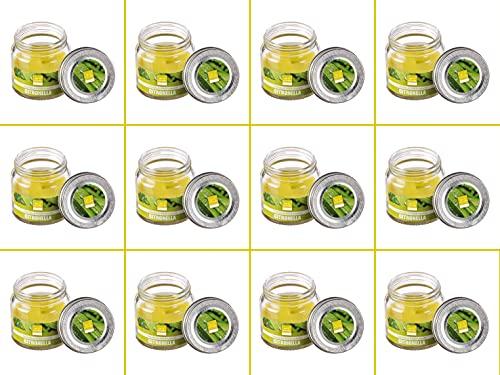 Juego de 12 velas perfumadas de citronela de cristal, 6 x 6 cm, duración de cada tarro de 16 h antimosquitos para exterior, terraza, jardín, camping, picnic.