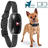 Pequeño Collar de corteza de perro sin choque de GoodBoy Recargable e impermeable Cortaviento vibrante para los perros pequeños y medianos 2,5 + kg 12 cm-48cm