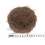 LWINGFLYER 2pcs Rattan Bird's Nest Crafts Handmade Dry Natural Bird's Nest for Garden Yard Home Party Wedding Decor No Eggs(12cm/4.72inch)