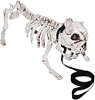 Shindigz Skeleton Dog