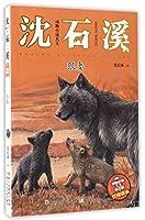 动物小说大王沈石溪·注音读本:狼妻