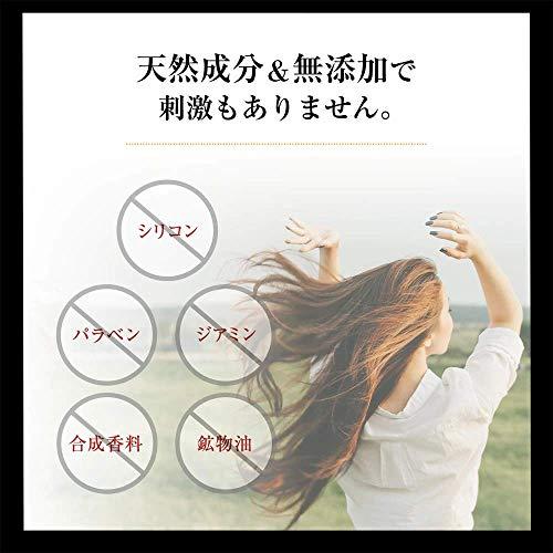 白髪隠しヘアマスカラリタッチレフィーネ10g白髪染め女性用男性用人気白髪ブラウンブラックヘアカラーヘアケアトラベルセット(ダークブラウン)