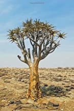 Sunrise at the Quiver Tree Forest Keetmanshoop Namibia Africa Journal: 150 Page Lined Notebook/Diary