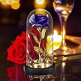 'Rose Beauty and the Beast' - TEHGUS Rosa Eterna, Rosa Artificial con Elegante Cúpula de Cristal con Luces LED, Regalo Ideal para el día de San Valentín, día de la Madre, Decoración(Azul)