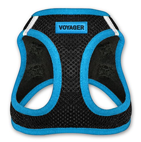 Best Pet Supplies Voyager - All Weather No Pull Step-in Mesh Dog Harness with Padded Vest for Puppy and Cats - Blue, Small (207-BU-S)