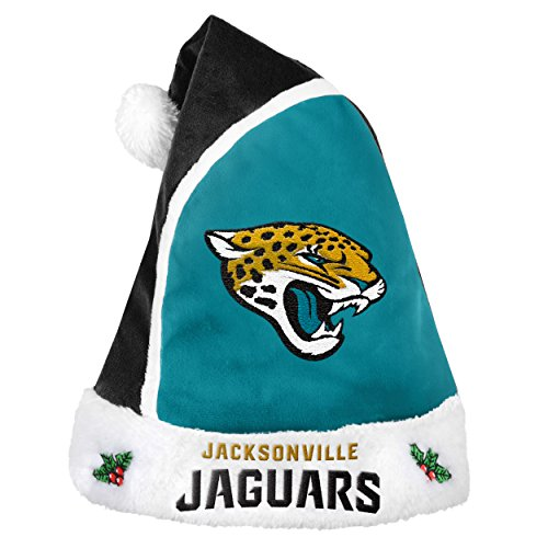 Jacksonville Jaguars 2015 Basic