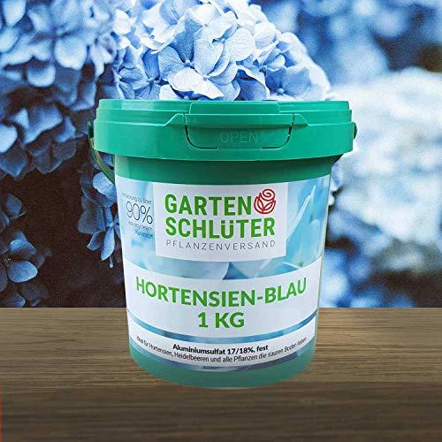 Schlüter´s Hortensien-Blau - 17/18% Aluminiumsulfat, fest - Blaue Hortensien durch sauren Boden - 1 kg von Garten Schlüter