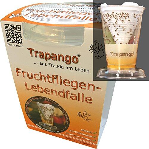 Trapango Fruchtfliegen-Lebendfalle