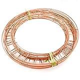 Paquete de 20 anillos de alambre de 10 pulgadas para festivales o manualidades navideñas (coronas, ETC)