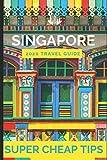 Super Cheap Singapore - Travel Guide 2020: Enjoy a $1,000 trip to Singapore for $150