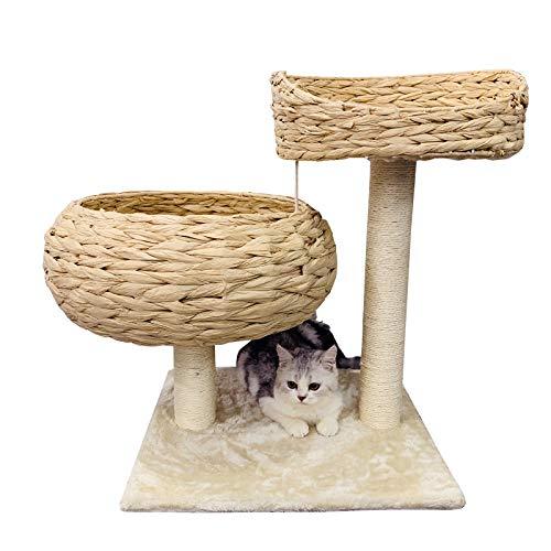 GNEGNIS Kratzbaum Katzenbett mit Kratzbett Robuster Kletterbaum für Katzen Katzenmöbel Katzenturm mit 2 Kissen/Korb (Höhe 55 cm, beige)