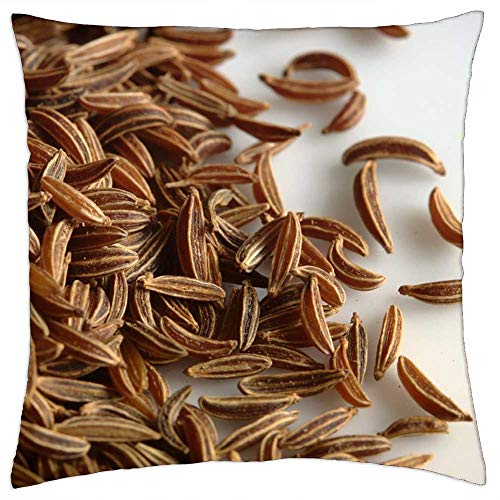 LESGAULEST Throw Pillow Cover (24x24 inch) - Caraway Seeds Macro Close-Up Background Food