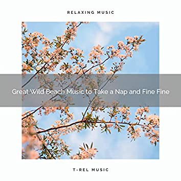 2020 Best: Great Wild Beach Music to Take a Nap and Fine Fine
