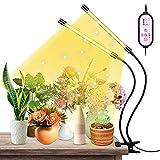 ZOROSS Pflanzenlampen LED, LED Grow Lampe Vollspektrum...