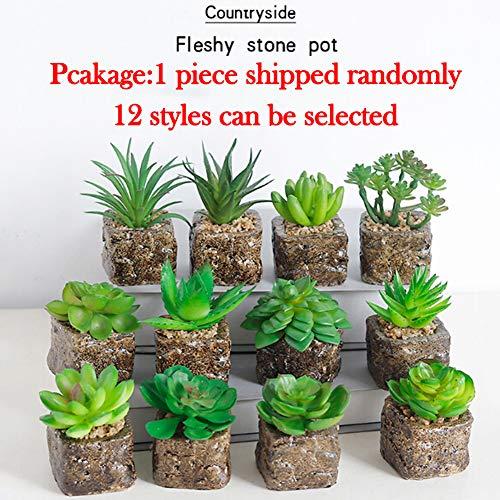 Delleu 12 Estilos Mini Plantas Suculentas Artificiales Plantas Decorativas de Cactus Cactus Plantas Faux Potted (Aleatorio)