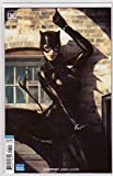 Catwoman #1 (2018) Variant Stanley Artgerm...