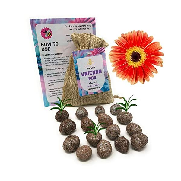 Flower Bee Balls | Bee Friendly Seed Bombs - UK Native Wildflower Seed Bombs, Grow Beautiful Flowers in Your Garden to Help Bring Back The Bees, Perfect Eco-Gift for The Gardener in Your Life