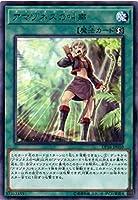 遊戯王/第10期/DP18-JP010 アマゾネスの叫声 R